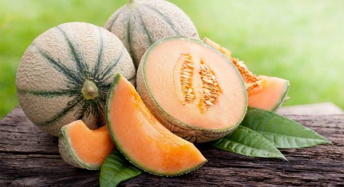 Vi aspettiamo ad Otto Ducati d'Oro in occasione della Festa del Melone 2016