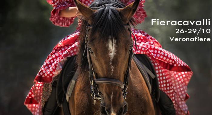 The country hotel in Verona with B&B for the 118° edition of Fieracavalli