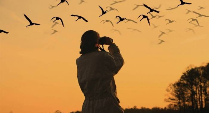 Agriturismo b&b for birdwatching in autumn
