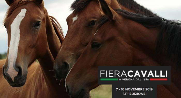 Fieracavalli 2019 and where to sleep for the Verona fair
