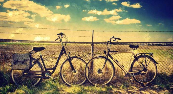 Servizio noleggio bici per tutti i vostri spostamenti!