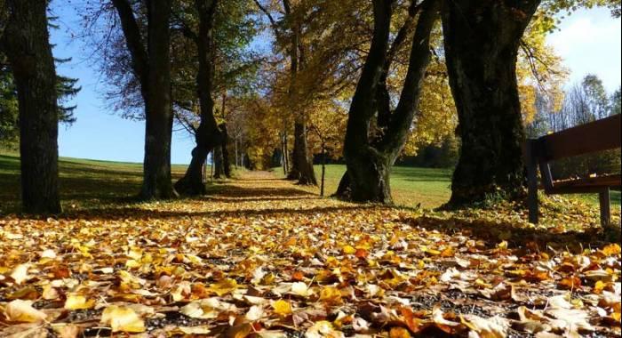 5 idee per un weekend autunnale fra Verona e Mantova