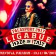 Ligabue's concert in Mantua, October 2017