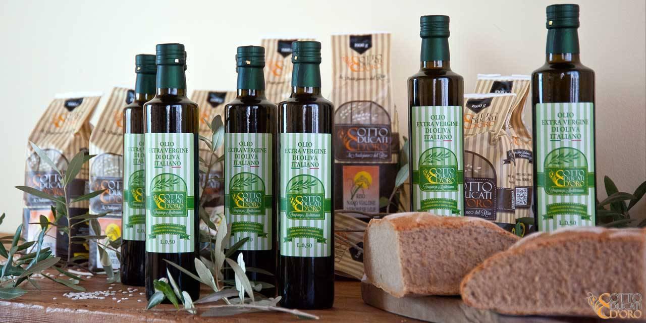 Olio extra vergine di oliva di produzione Otto Ducati d'Oro, dalle Colline di Cecina in Toscana,