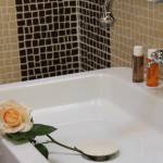 Hotel for business trips with rooms en-suite bathroom